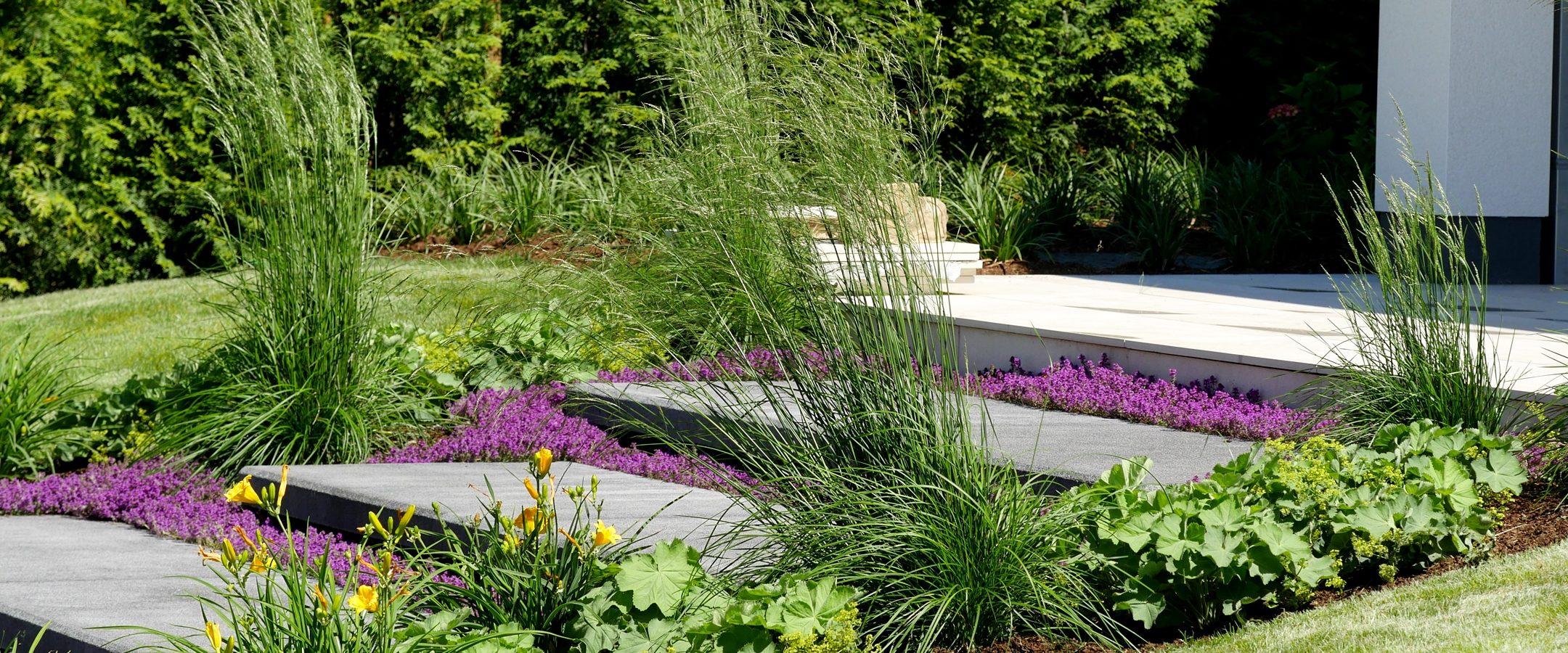 Treppenanlage bepflanzt mit Thymus serphyllum